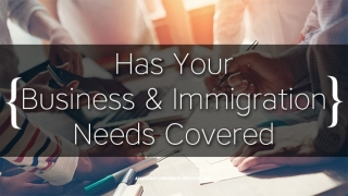 Has Your Business & Immigration Needs Covered